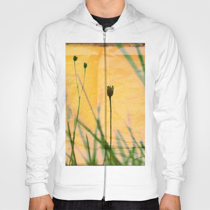Polaroid photo yellow flower Hoody