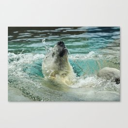 Polar Plunge Canvas Print