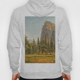 Bridal Veil Falls, Yosemite Valley, California Hoody