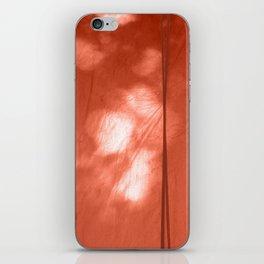 Morning Light iPhone Skin