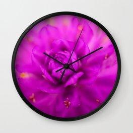 Macro painting Wall Clock