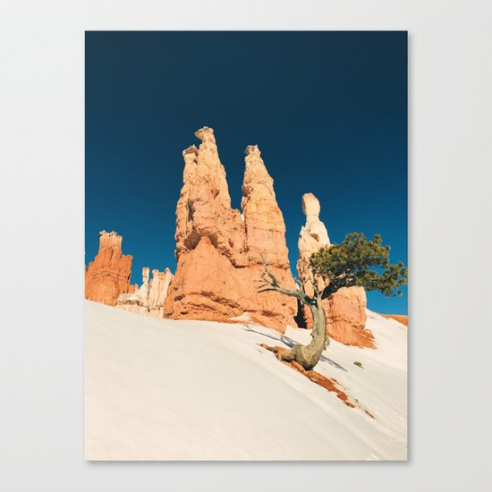 Desert Landscape #photography Canvas Print