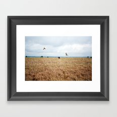 African Safari.  Framed Art Print