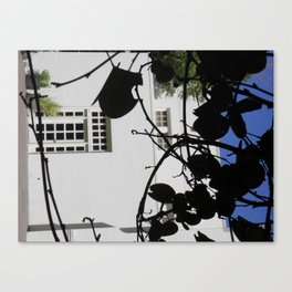Secret Garden - 3  Canvas Print