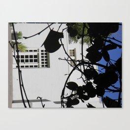 Secret Garden - 3  Canvas Print