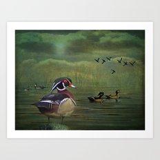 Wood Ducks at the Lake Art Print