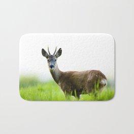 Roe Deer Buck 2 Bath Mat