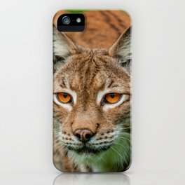 LYNX PORTRAIT iPhone Case