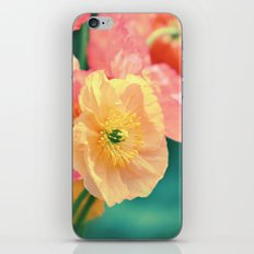 Vintage Pastel Poppies in Golden & Peach tones iPhone & iPod Skin