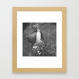 czarna gruszka Framed Art Print