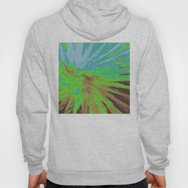 Psychedelica Chroma XIV Hoody