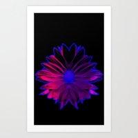 Night Glow Art Print
