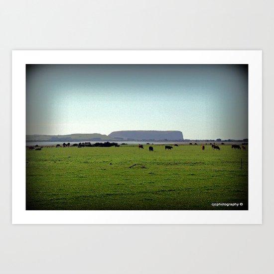 Grazing property in Tasmania Art Print