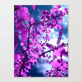 purple ginkgo tree VII Canvas Print
