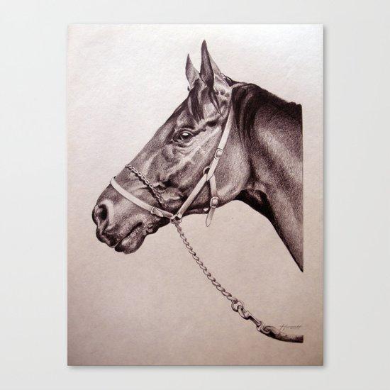 Sir Alfred - Racehorse Canvas Print