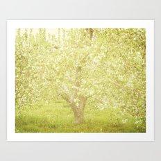 Cherry Tree Art Print
