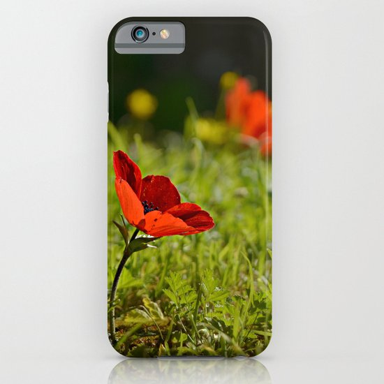 Solitary Anemone iPhone & iPod Case
