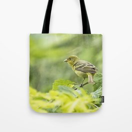 Female Western Tanager Tote Bag