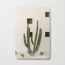 Cabo Cactus IX Metal Print