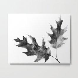 two leaves Metal Print