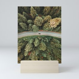 winding road on a forest Mini Art Print