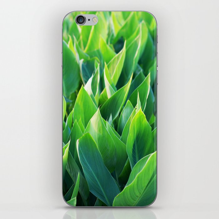 Green leaves so beautiful. iPhone Skin