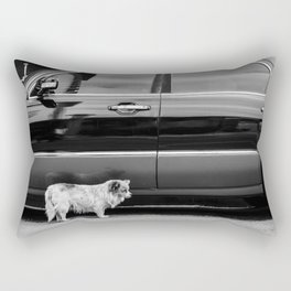 No Place to Hide Rectangular Pillow