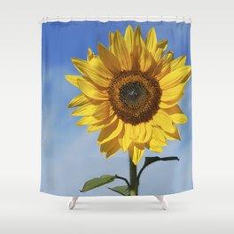 Sunflower flower Shower Curtain