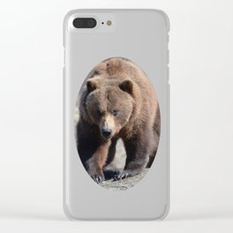Alaskan Grizzly Bear - Spring Clear iPhone Case