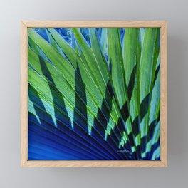 Palm Shadows Framed Mini Art Print
