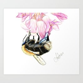 Out for lunch - BumbleBee Art Print