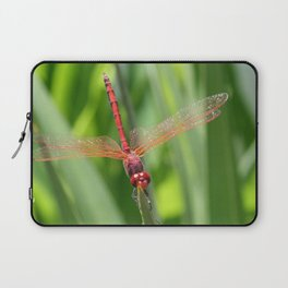 Closeup of Red Skimmer or Firecracker Dragonfly Laptop Sleeve
