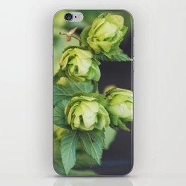 Hop Head iPhone Skin