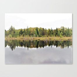 When A Tree Falls In The Forest: Soundwave Canvas Print