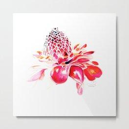 Red Ginger Flower Metal Print