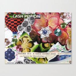 Snotion Canvas Print