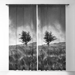 A single tree on Dartmoor. Blackout Curtain