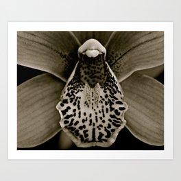Bugged Art Print