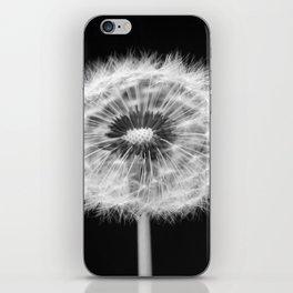 missing dandelion iPhone Skin