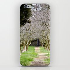 The Path of Life Ends iPhone & iPod Skin