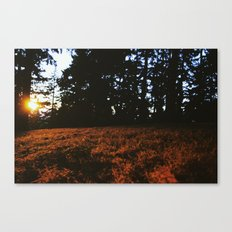 Fall's Last Light Canvas Print