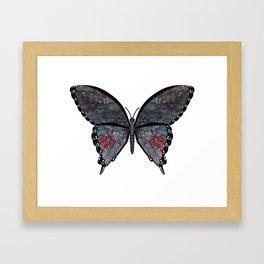 midnight gypsy (Bohemien melanos) Framed Art Print