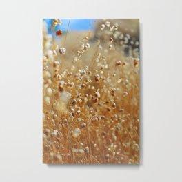 Golden Hay Rattle Metal Print