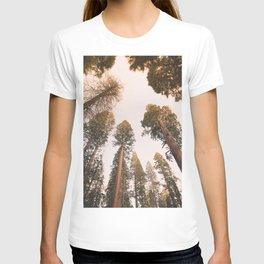 Sequoia Sunset T-shirt