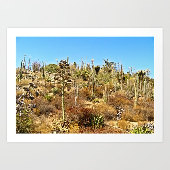 The Land of the Cacti  Art Print