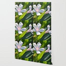 Olender 143 Wallpaper