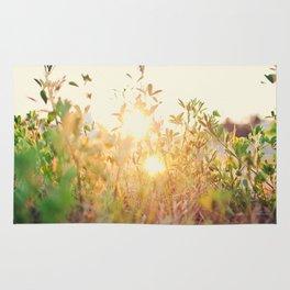 Sun Rising Rug