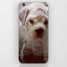 Gunther iPhone Skin