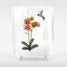 Hummingbird & Phalaenopsis Shower Curtain