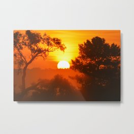 Foggy Summer Morning 2 Metal Print
